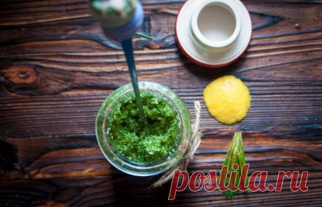 Хвойный сахар, крапивное тесто и другие наши зелёные вкусняшки из весеннего леса | Живые вещи | Яндекс Дзен