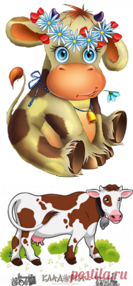 Кладовка...: Коровы  - на прозрачном фоне