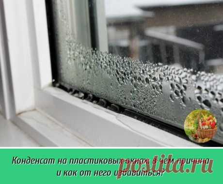 У пластиковых окон эстетичный вид, они просты в уходе и надежно защищают наш дом от воздействия внешней среды. | OK.RU