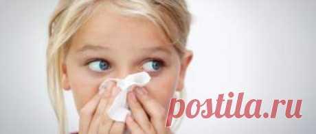 Как избавиться от пылевых клещей – лучшие способы