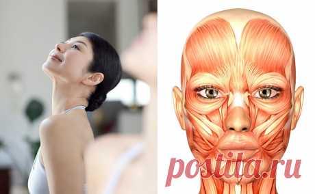 Мамада Йошико: Вот как подтянуть лицо всего за 10 секунд в день! Это отличная профилактика морщин и второго подбородка Безоперационная подтяжка лица от Мамады Йошико — настоящая находка для барышень всех возрастов и достатка!