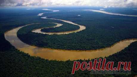 Интересные факты про Амазонку