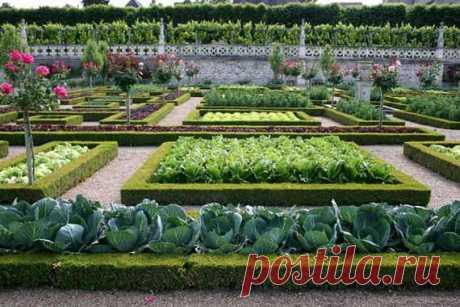Декоративный огород Источник