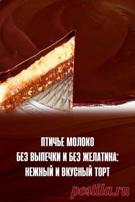 Птичье молоко без выпечки и без желатина: нежный и вкусный торт