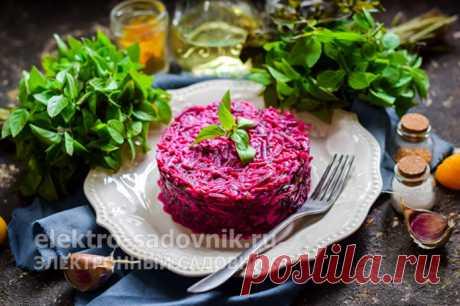 Салаты из вареной свеклы: рецепты с фото простые и вкусные