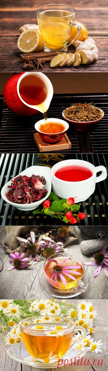 Какие приготовить полезнейшие чаи, способствующие укреплению здоровья