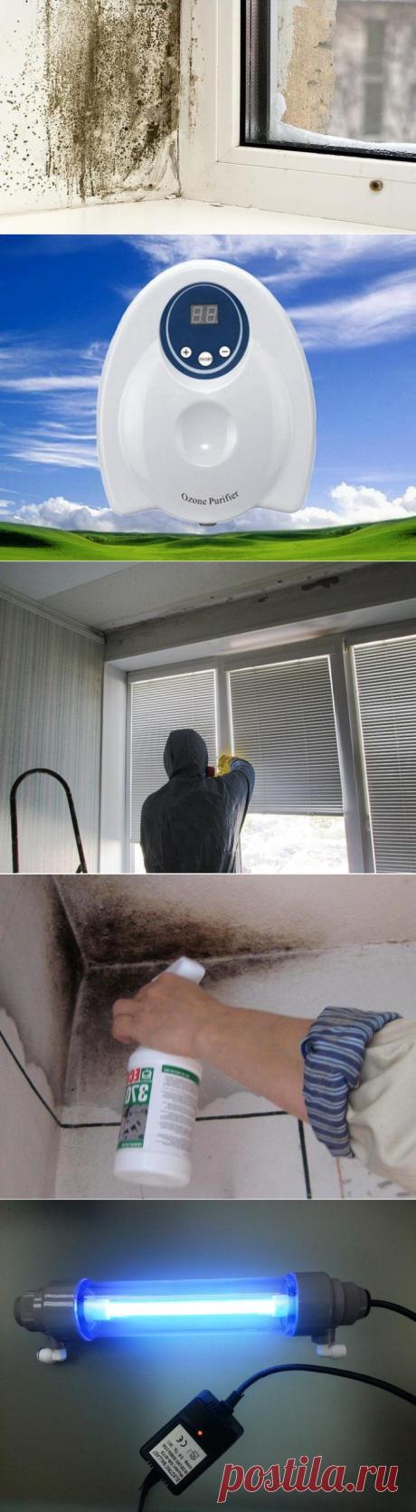 Удаляем плесень с откосов и пластиковых окон