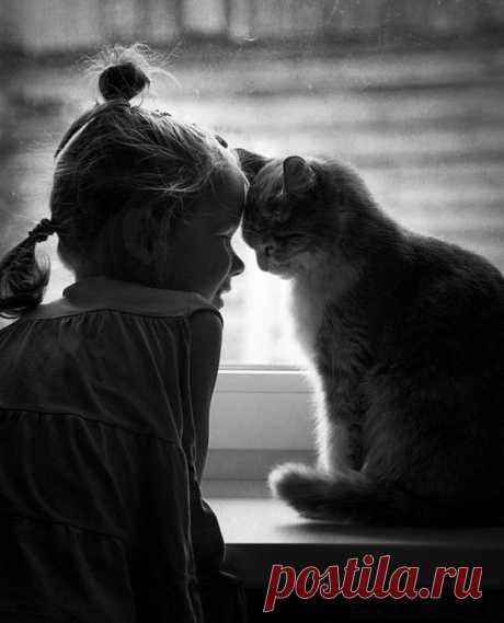 Подлинная доброта молчалива. У неё в запасе много поступков и ни единого слова. (М. Аксельссон)