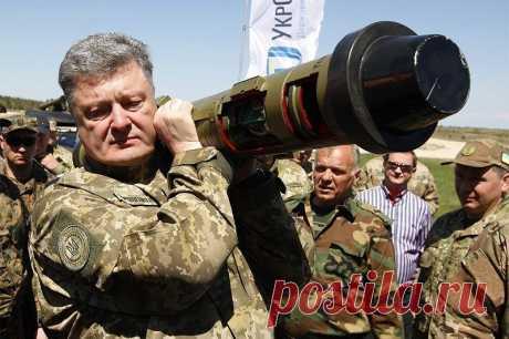 США: Украину нельзя принимать в НАТО | В мире