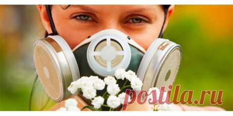 Препараты от аллергии — лучшие и самые эффективные средства и лекарства против аллергии
