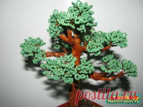 Дерево из бисера своими руками. Бонсай из бисера. Мастер класс