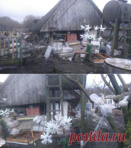 В Каменецком районе в сарае взорвался газ: от строения осталась только крыша, хозяин - в больнице - grodno24.ru