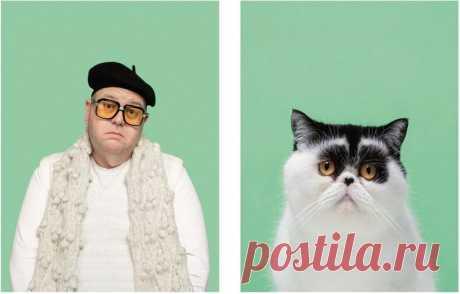 10 поразительных фото, где коты как две капли воды похожи на людей — блог туриста Anna_Kambarova на Туристер.Ру