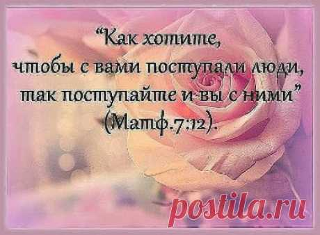 Zulya S - Google +