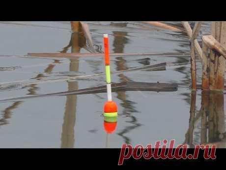 Рыбалка на карася. My fishing
