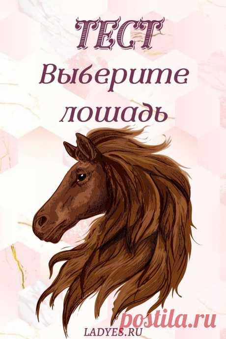 Ваши личностные качества будут раскрыты с помощью этого теста. Посмотрите на этих лошадей. Какая вызывает у вас положительные эмоции? Может быть, вы связываете себя с одной из этих лошадей?
