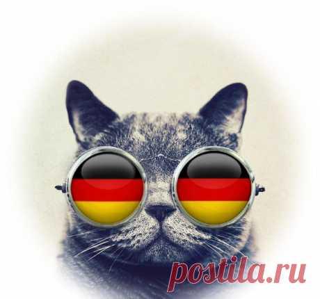 25 КОРОТКИХ НЕМЕЦКИХ ФРАЗ НА ВСЕ СЛУЧАИ ЖИЗНИ!  / Изучение немецкого языка