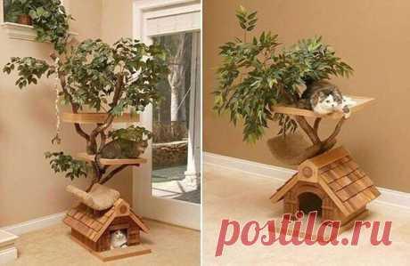 Домик для котейки