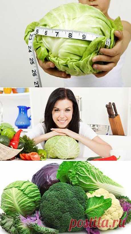 Капустная диета – до 5 кг всего лишь за неделю | Секреты тела