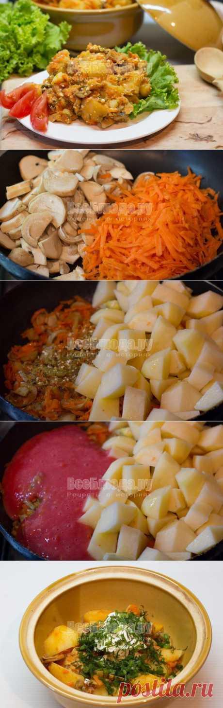 Как приготовить картошку с грибами в горшочке, тушеную в духовке со сметаной, рецепт с фото | Все Блюда