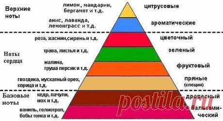 Парфюмерная пирамида и другие мифы