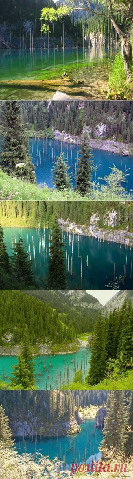 Озеро-дикобраз / Туристический спутник