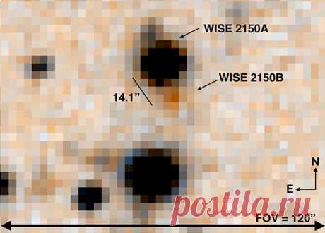 Астрономы-любители помогли найти редкий двойной коричневый карлик Добровольцы помогли ученым обнаружить редкую звездную систему из двух коричневых карликов, находящихся на широкой орбите. Более холодный и маленький