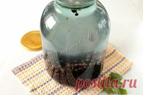 Компот из черной смородины на зиму — рецепт с фото пошагово