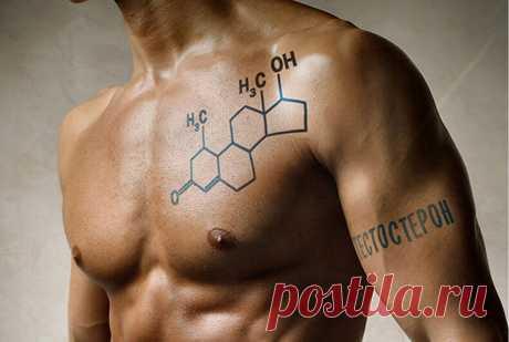 Продукты, снижающие выработку тестостерона у мужчин