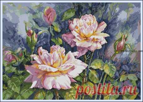 Шикарные розы вышивка крестом. Схемы вышивки розы цветы Шикарные розы вышивка крестом. Схемы вышивки розы цветы