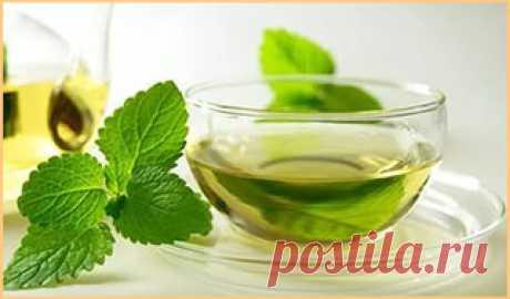 Удивительные свойства чая с мятой