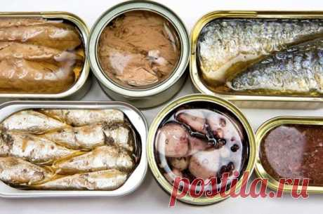 Escogemos los conservas de pescado — los consejos Útiles