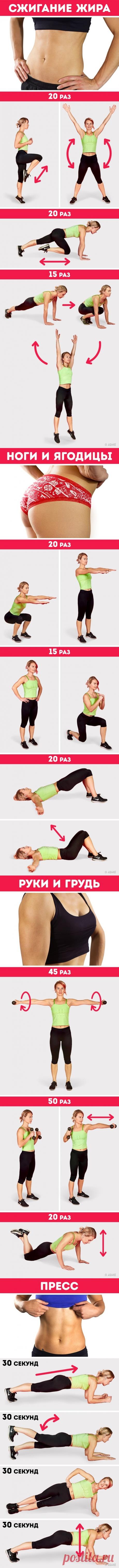 Упражнения чтобы прокачать все тело и сбросить вес