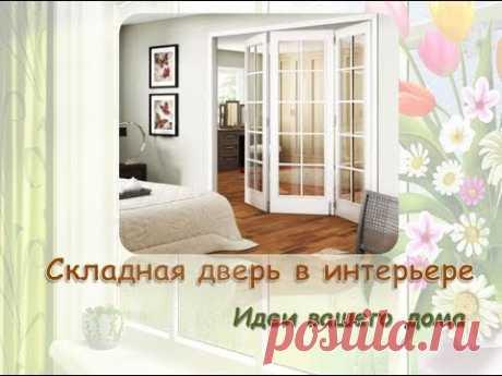 Складная межкомнатная дверь в интерьере