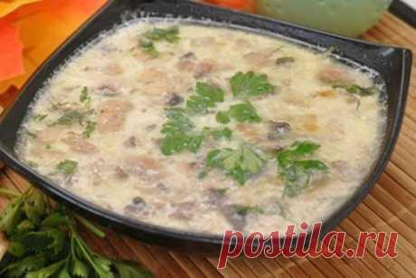 Грибной суп с сыром — Кулинария для всех
