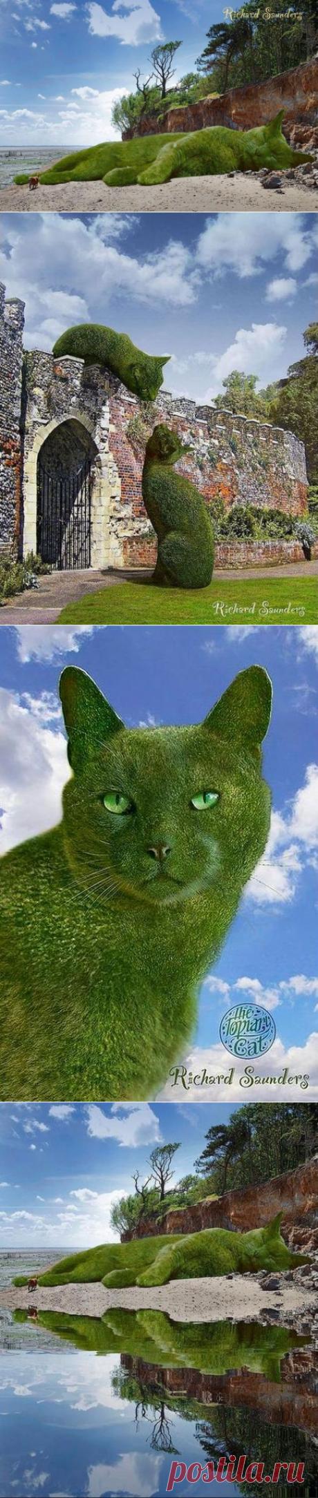Ландшафтные коты и Садовник. Фотохудожник Rich Saunders.