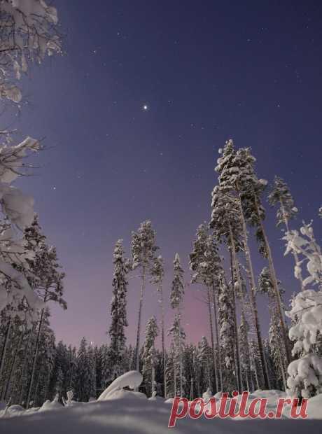 Фотография пользователя mikereva - Наедине с Юпитером из раздела пейзаж №5417398 - фото.сайт - Photosight.ru