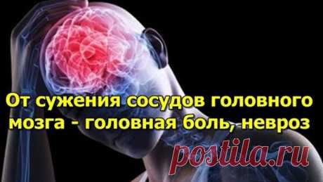 От сужения сосудов головного мозга - Народная медицина