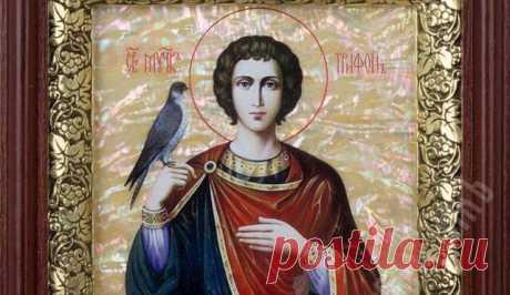 Молитва Святому Мученику Трифону (Чтобы найти работу молитесь каждый день, результаты будут налицо)
