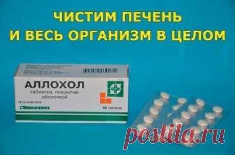 ЧИСТИМ ПЕЧЕНЬ И ВЕСЬ ОРГАНИЗМ В ЦЕЛОМ.   Программа очищения рассчитана на 14 дней, три раза в в день принимать таблетки Аллохола.  1-й день - по 1 таблетке 3 раза в день;  2-й день - по 2 таблетке 3 раза в день;  3-й день - по 3 таблетки 3 раза в день;  4-й день - по 4 таблетки 3 раза в день;  5-й день - по 5 таблеток 3 раза в день;  6-й день - по 6 таблеток 3 раза в день;  7-й день - по 7 таблеток 3 раза в день;  8-й день - по 7 таблеток 3 раза в день, далее по-убывающей,...