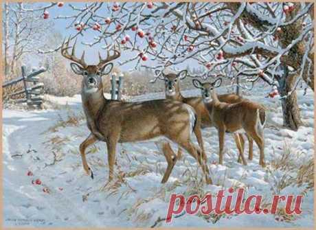 Схема вышивки «олени в зимнем саду» - Вышивка крестом