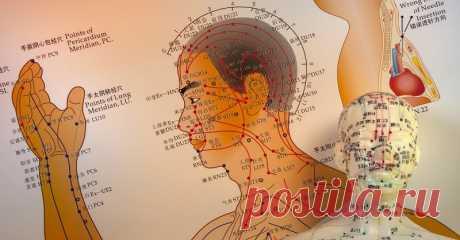 Кинезиологические упражнения: Уже тысячи лет традиционная китайская медицина снимает боль, улучшает работу внутренних органов, а также избавляет от стресса и всех вытекающих из него последствий с помощью влияния на биологически активные точки на теле человека