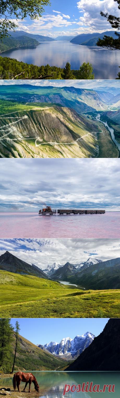 Золотые горы: что посмотреть на Алтае. Что посмотреть на Алтае? На этот вопрос без пафоса можно ответить: всё. Алтай прекрасен от речных истоков до горных вершин. Но мы все же сумели составить список его самых интересных достопримечательностей.