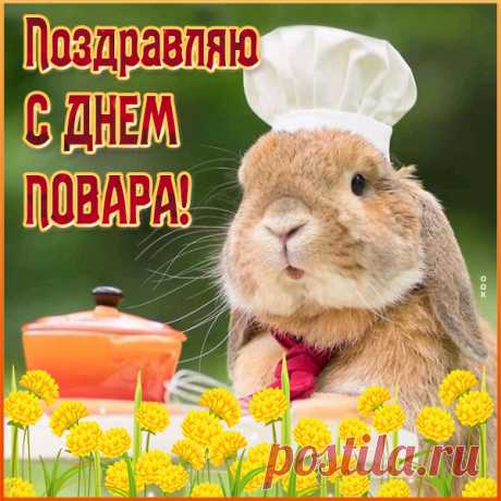 Милая картинка с днем повара с кроликом