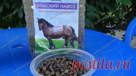 Как улучшить плодородие почвы, если нет ни перегноя, ни компоста, ни навоза   Любимая усадьба   Яндекс Дзен