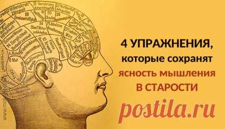 Упражнения, которые сохранят ясность мышления в старости С помощью этих четырех упражнений вы не потеряете ясность мышления даже в глубокой старости.