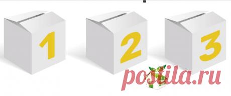 Я начала использовать Принцип трех коробок, и порядок навести стало гораздо проще | В ЖИЗНИ это ПРИГОДИТСЯ | Яндекс Дзен