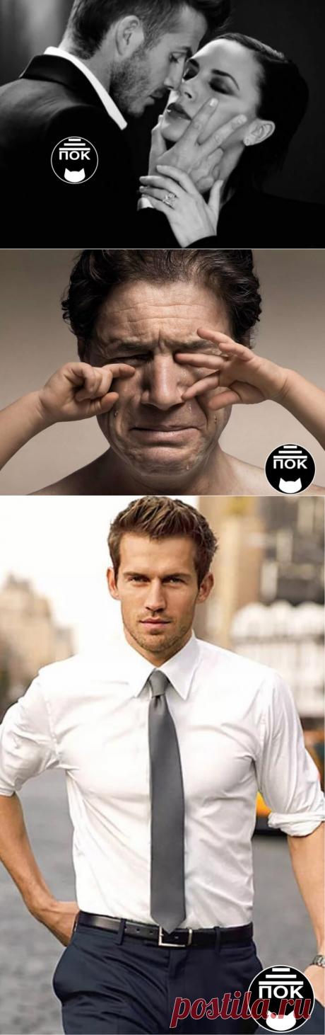 Какие мужчины нравятся и не нравятся женщинам | Психология от кота | Яндекс Дзен