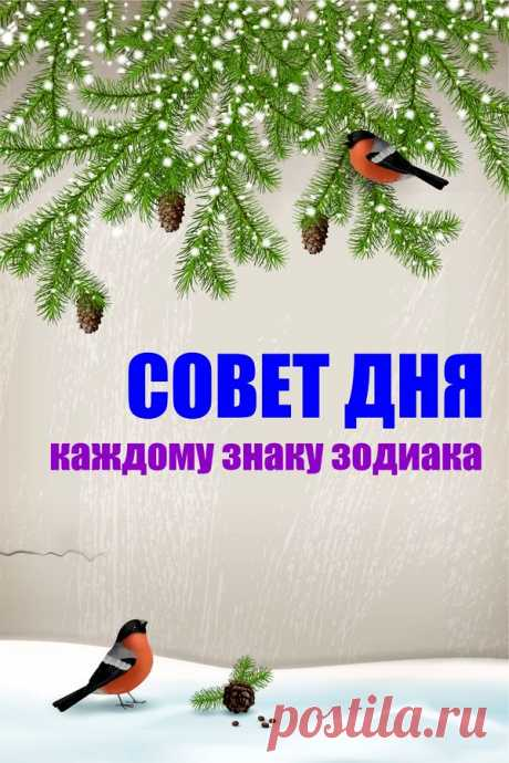 Совет дня каждому знаку зодиака   ГОРНИЦА