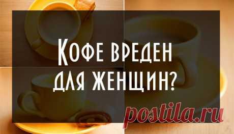 Скучающий ленивец — Кофе вреден для женщин?